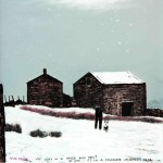 Who Lives in A House Like This By Peter Brook